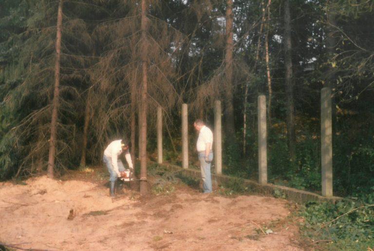 Bäume fällen auf dem neunen Grundstück